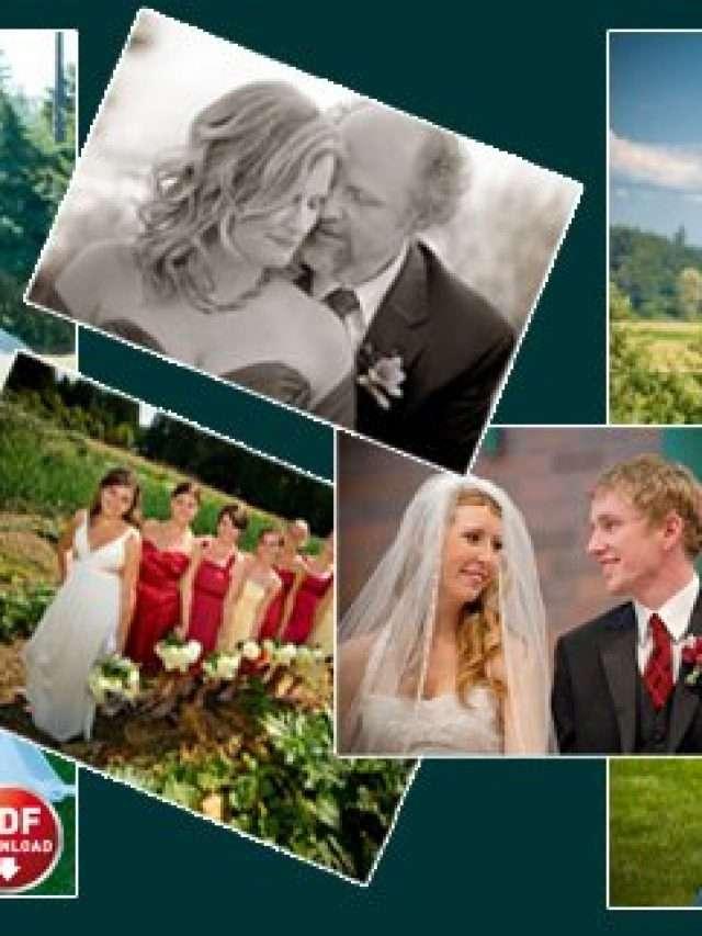 cropped-wedding-pricing.jpg
